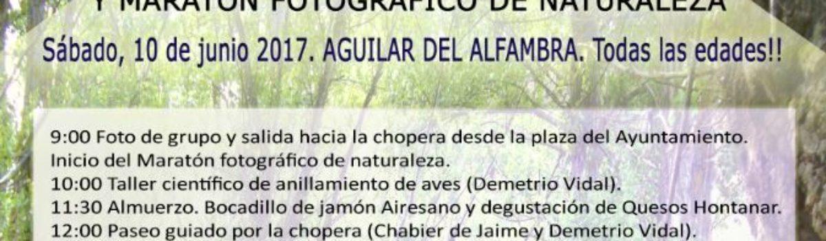 TALLER DE ORNITOLOGÍA EN EL PAISAJE DEL CHOPO CABECERO Y MARATÓN FOTOGRÁFICO DE LA NATURALEZA