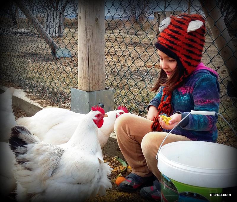 Educación Ambiental Concienciación Animal